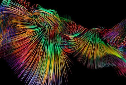 L'Art numérique : prière de toucher à tout